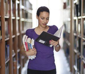 vie professionnelle -archiviste